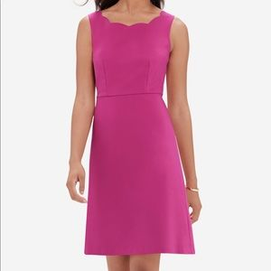 The Limited Scalloped Dress A Line Pink NWT